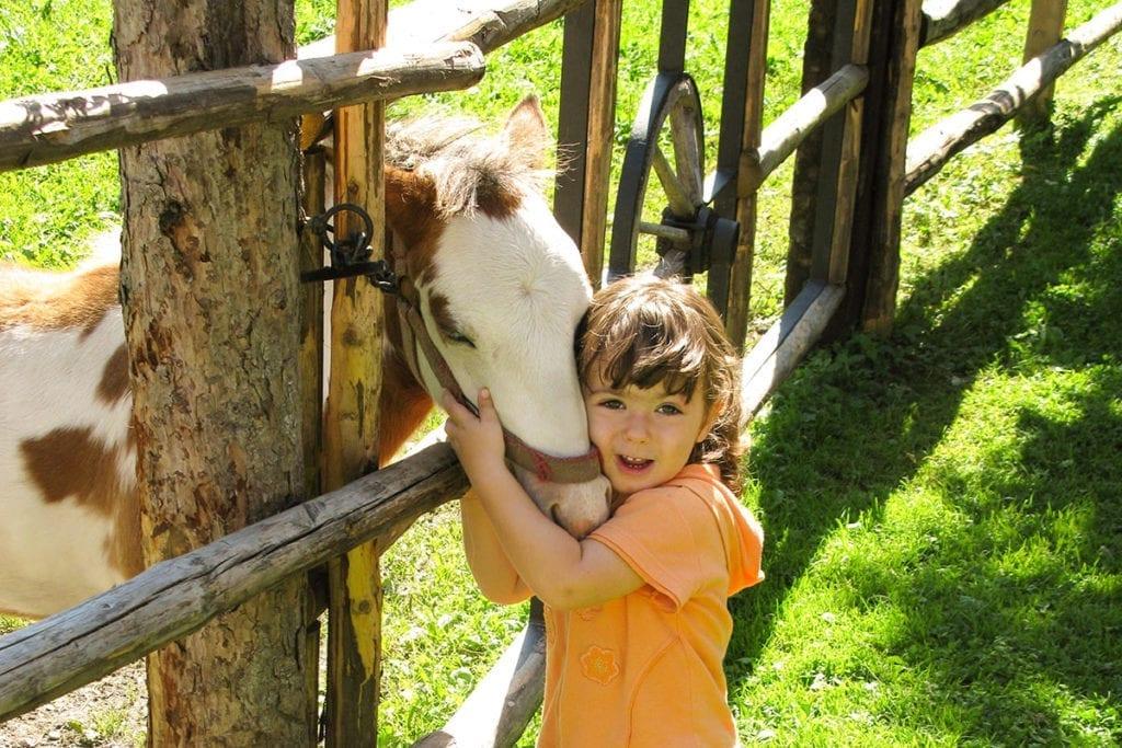 Tiere - Bauernhofurlaub in Bad Hofgastein